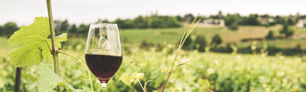 Witte wijn uit Veneto